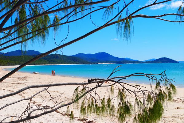 Whitsundays (79)