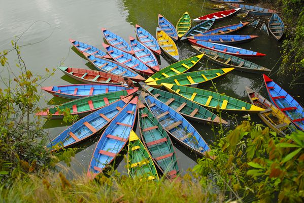 pokhara barques