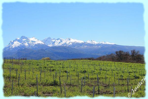 Patagonie-001.jpg