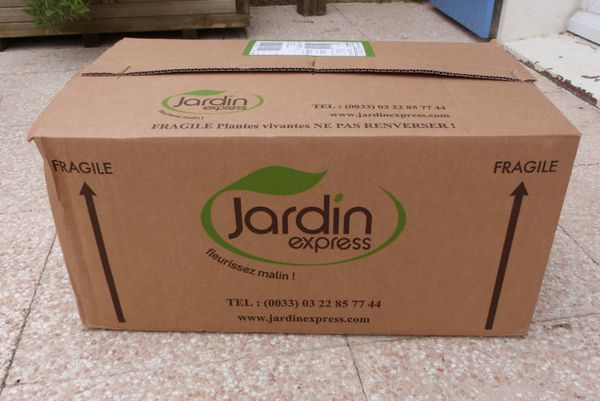 Plantation des jardini res et suspensions le blog de for Jardin express