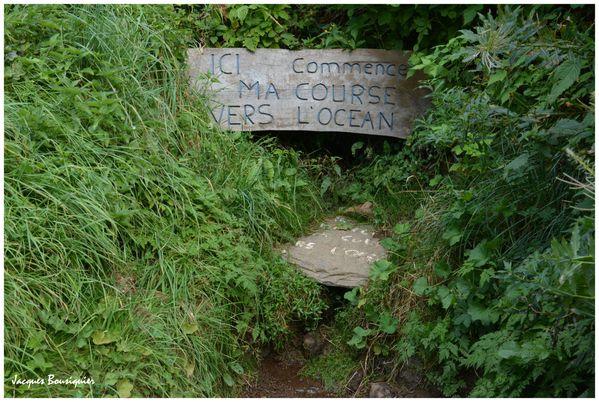 Source de la Loire 2 Mont Gerbier de Jonc