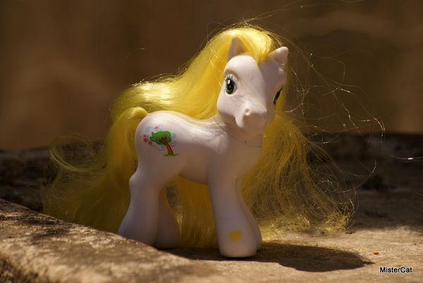 mon petit poney hasbro my little pony (19)