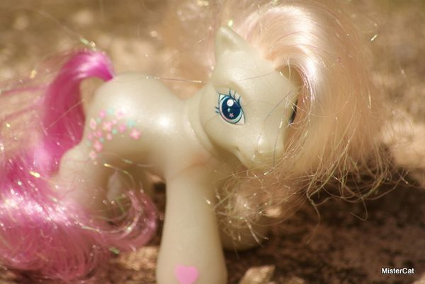 mon petit poney hasbro my little pony (24)