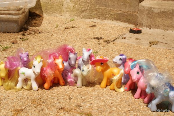 mon petit poney hasbro my little pony (25)