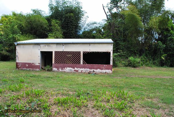 cantine-ecole-tracee-martinique