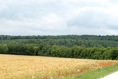 1-paysage-champetre-val-ane.jpg