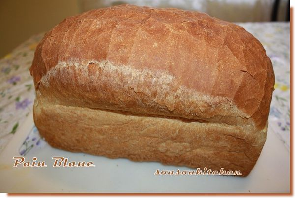 1-Pain blanc toaste (16)