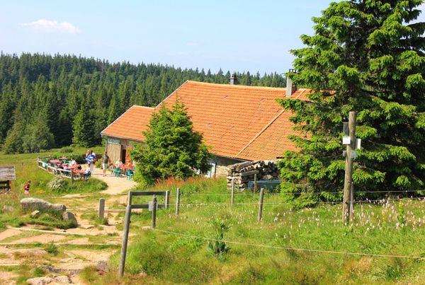 Lac-Vert 2585