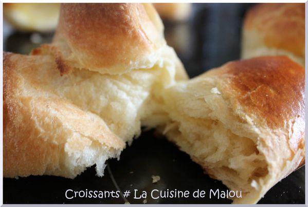 croissants-recette.JPG