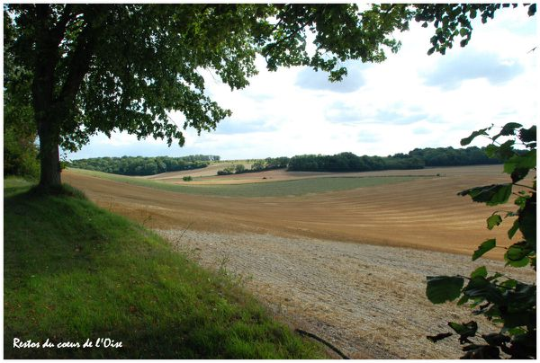 Froissy campagne 1