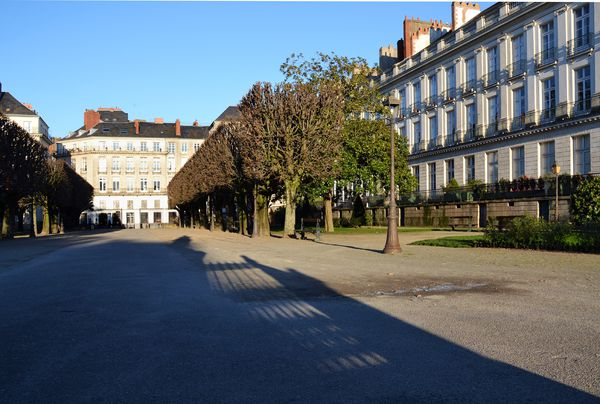 cours-cambronne-ombre.jpg