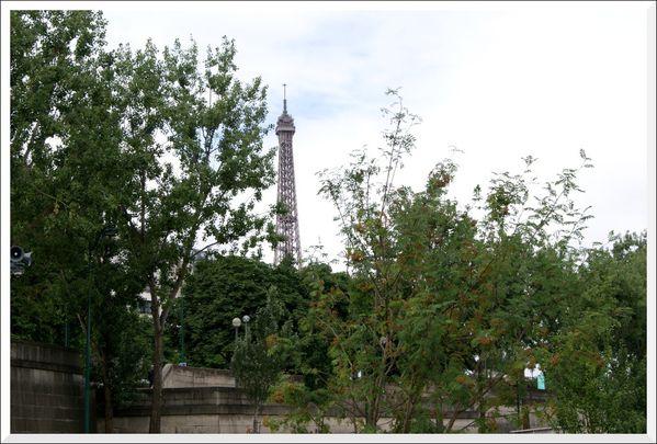 Berges de Seine 01 (13)