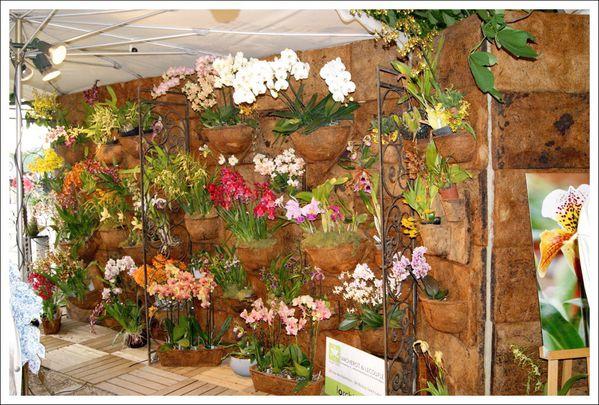 Jardins aux Tuileries (24)