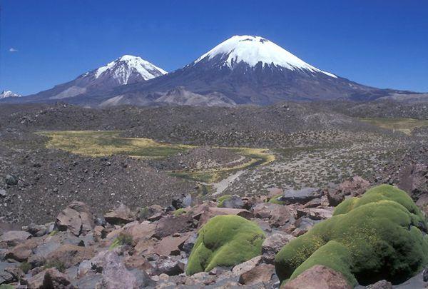 Nevado-de-Payachata-group---Lee-Siebert.jpg