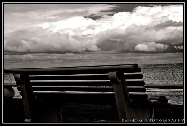 En noir et blanc, au bord de l'eau (2)