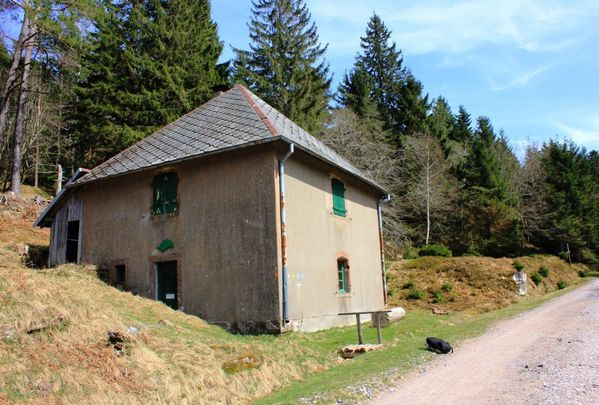 Sentier-des-Roches 7635 (FILEminimizer)