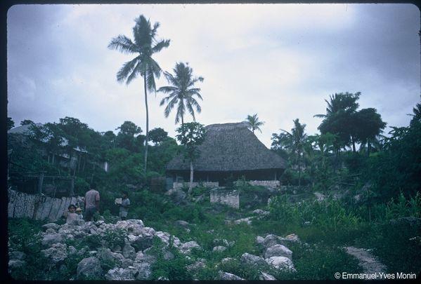 Timor.JNNPG