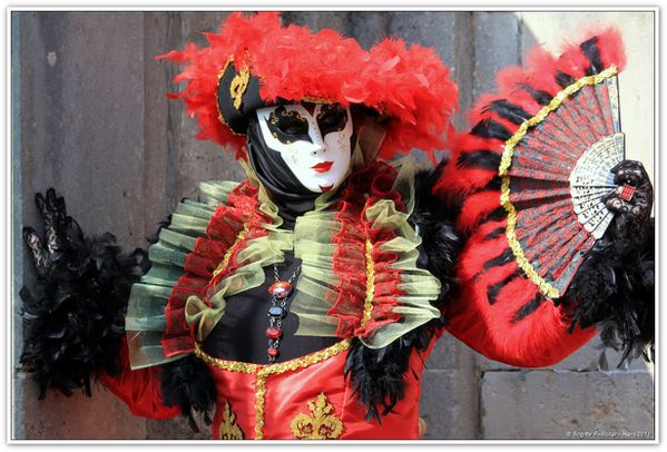 CARNAVAL REMIREMONT 2012 (360)