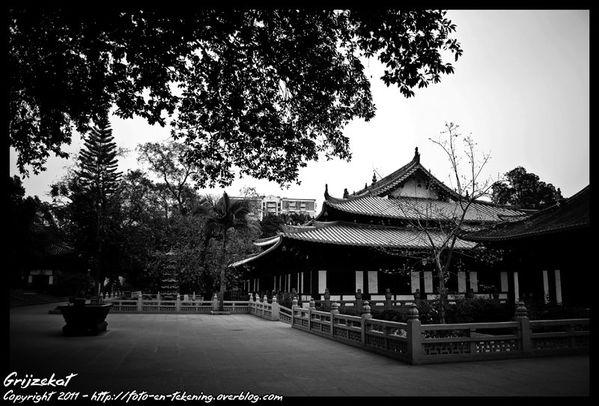 GZ-TEMPLE-BLOG-18-LQ