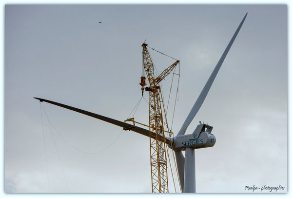 Eoliennes-2013 7812