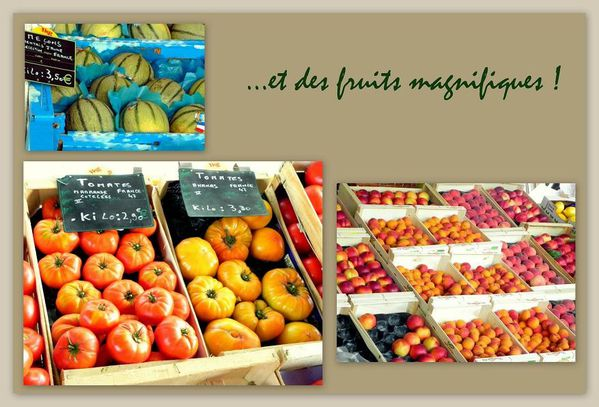 fruits-de-la-cabane-du-gout-copie-1.jpg