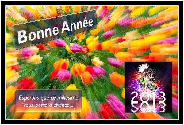Voeux_2013_public.jpg
