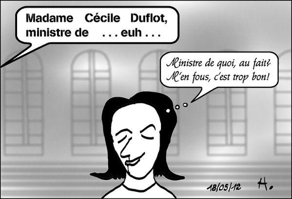 Duflot-ministre--c-est-trop-bon.jpg