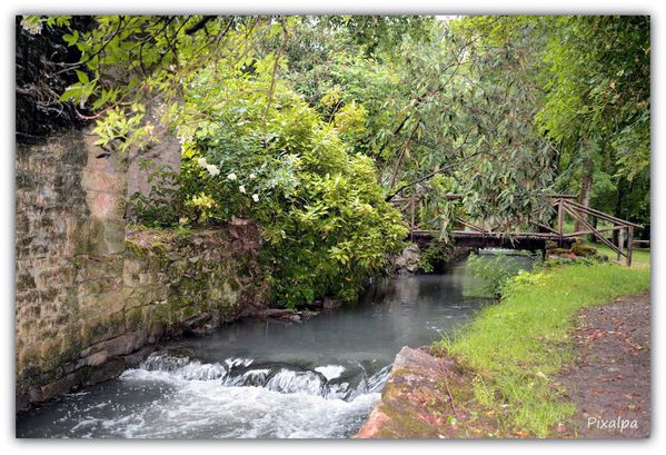 Arboretum-de-Nanteuil 3180
