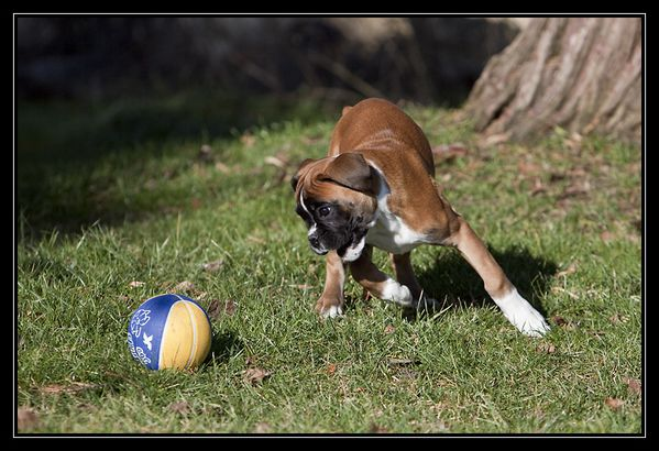 Fiona - Foot & Rugby - web - IMG 9502
