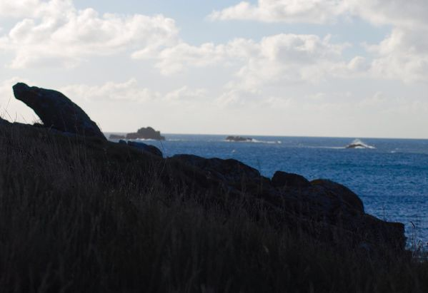 Ouessant 2010 (15)