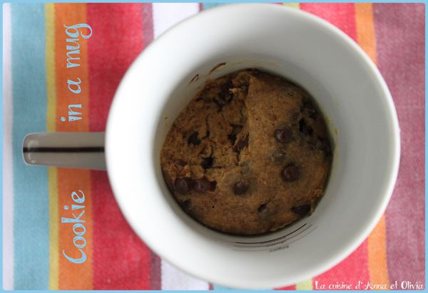 Cookie-in-a-mug-sucre-de-coco.jpg