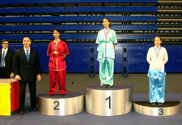 31 janvier 2015 Champ IDF Taolu FFKDA Coubertin 5b