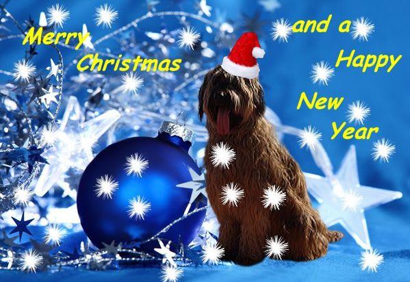Weihnachtskarte2013.jpg