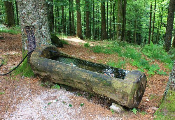 Lac-des-Corbeaux 2093 (FILEminimizer)