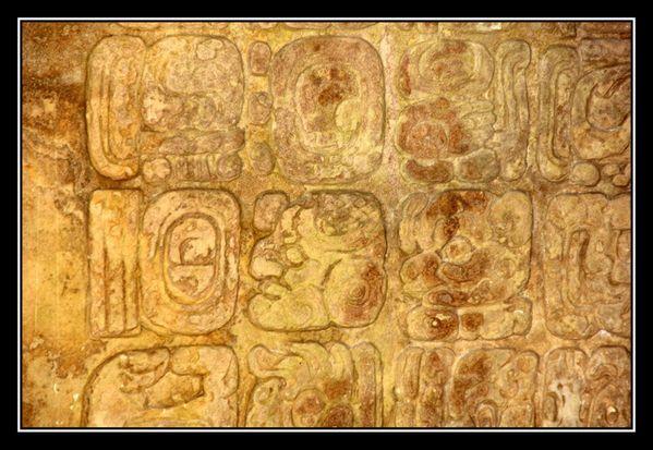 F Palenque12
