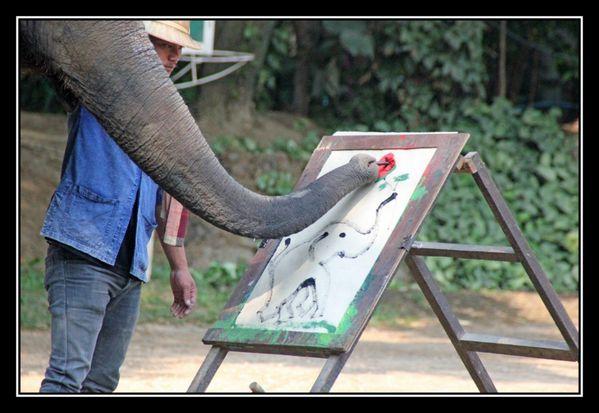 P16 Elephant Asie