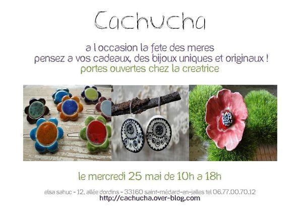 portes-ouvertes-cachucha-2011.jpg