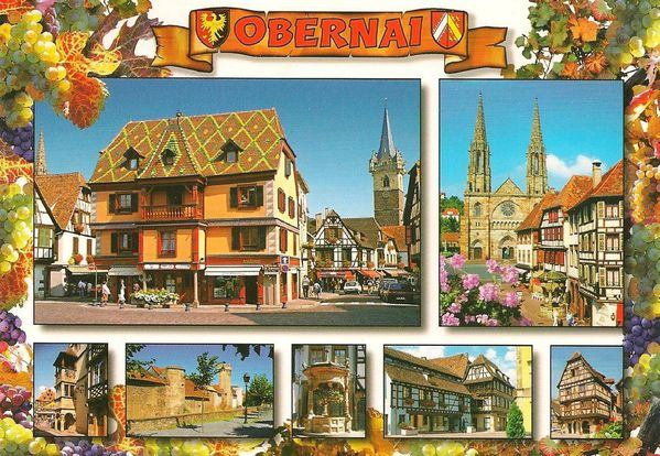 Carte postale habitation bbbbbbb Au pays des cigognes