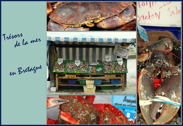 trésors de la mer