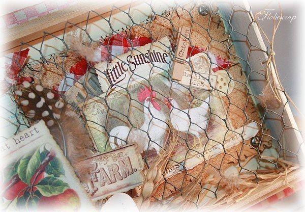 cage-a-poule 2394