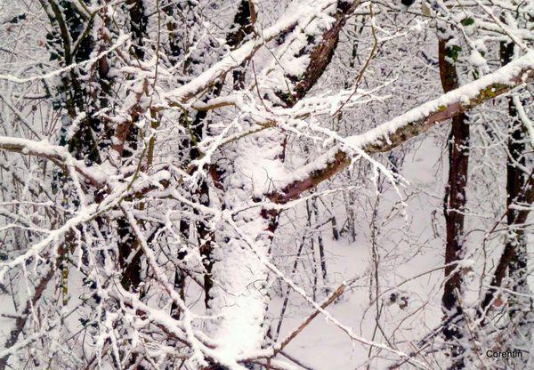 u05 -troc et neige