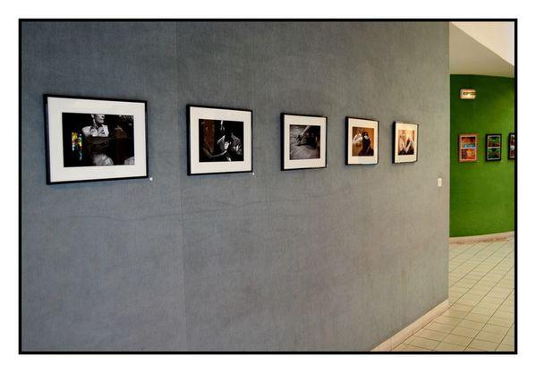 exposition-mmd-eric-rosier-artistes-saint-jean-de-la-ruelle.JPG