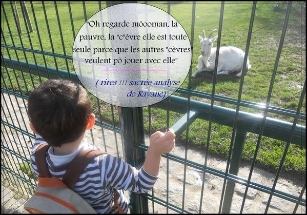 rayane-et-la-chevree-copie-1.jpg