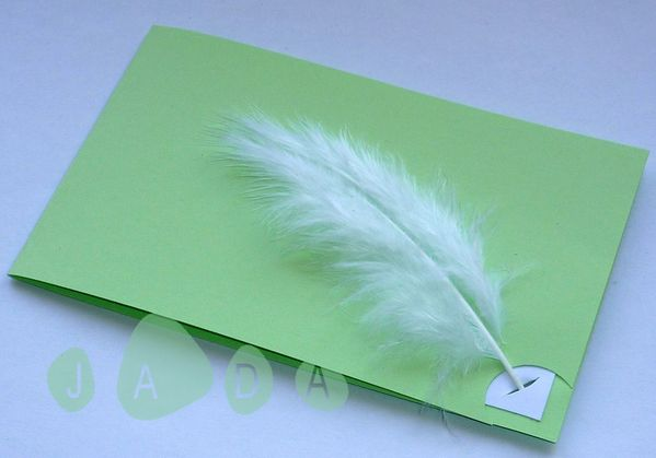 31 faire part plume rectangle vert anis blanc1
