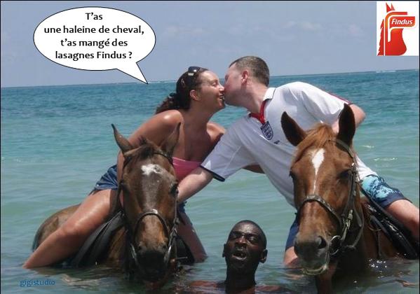 findus haleine cheval mer facebook