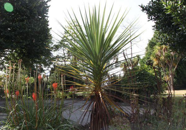 jardin-maritime 8109c