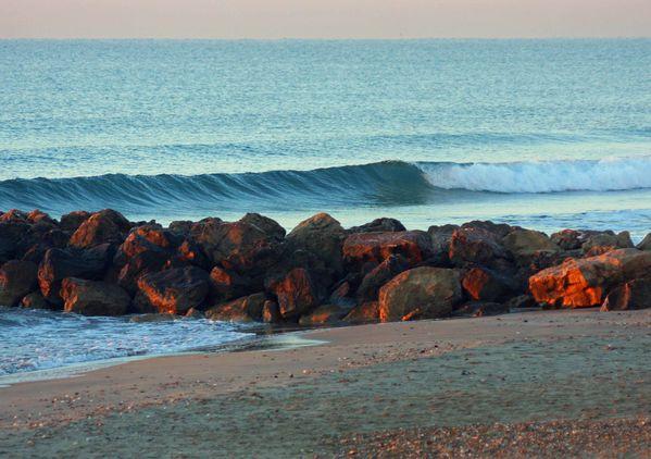 surf decembre 2013 (11)
