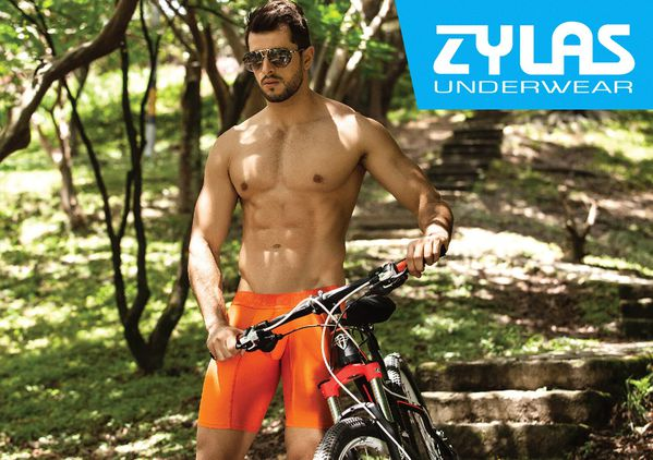 zylas-underwear-2013collection-21.jpg