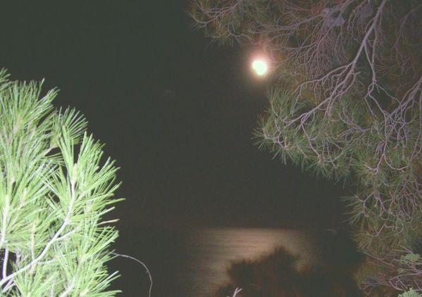 lune Rosie