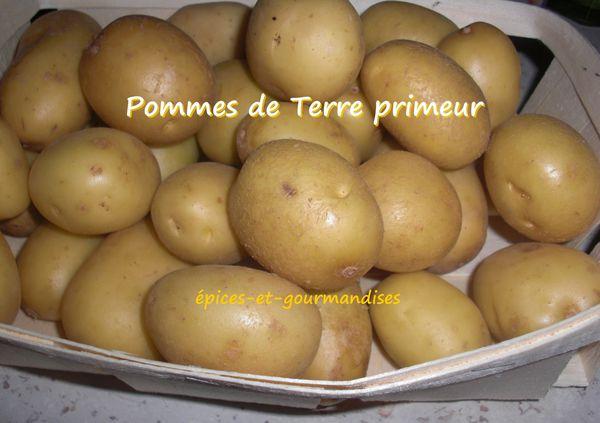 pommes-de-terre-primeurs-CIMG3479--2-.jpg